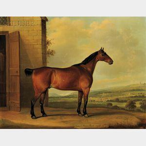 Thomas Weaver (British, 1774-1843)      Coach Horse, Bob, Aged 21 Years
