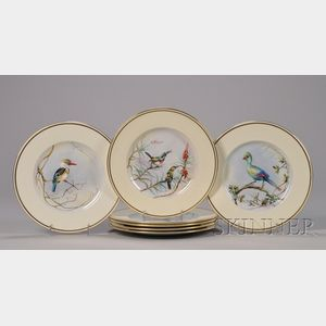 Set of Seven Wedgwood Hand-painted Birds of South Africa Plates