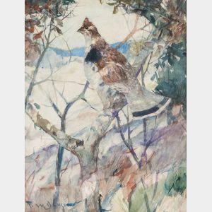 Frank Weston Benson (American, 1862-1951)      Ruffed Grouse