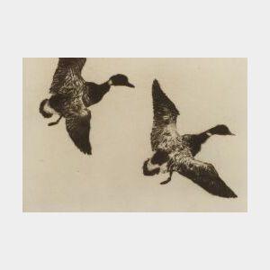 Frank Weston  Benson (American, 1862-1951)  Flying Brant