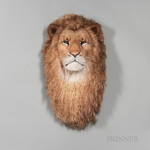 Anne Anderson (Swedish, 20th/21st Century) Fiber Lion Head Sculpture