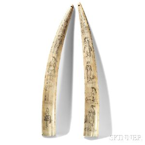 Pair of Scrimshaw Walrus Tusks