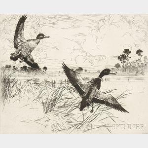 Frank Weston Benson (American, 1862-1951)      Mallards No. 2