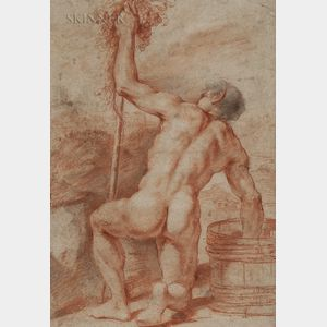 Bolognese School, Late 17th Century      Kneeling Male Nude Harvesting Grapes