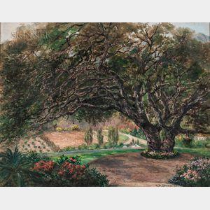 American School, 20th Century      Garden View