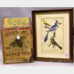 Queen Bee Japan Tea Lithographed Retail Bin and Walnut Framed Bird Print