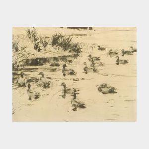 Frank Weston Benson (American, 1862-1951)  Ducks at Play