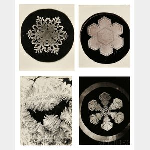 Wilson Alwyn Bentley (American, 1865-1931)      Four Photographs: Three of Snowflakes and One of Frost