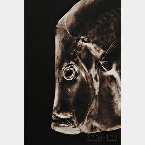 Henry Horenstein (American, b. 1947)      Lookdown Fish