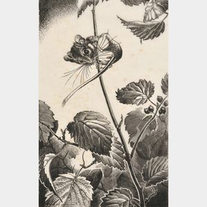 Dorothy Pulis Lathrop (American, b. 1891)      Two Animal Subjects: Treed