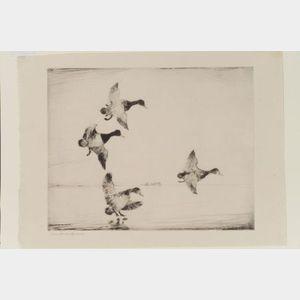 Frank Weston Benson (American, 1862-1951)    In Dropping Flight