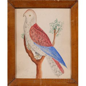 American School, 19th Century      Portrait of a Red and Blue Parrot.