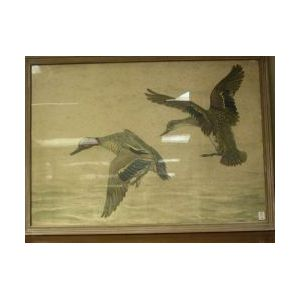 Framed Chromolithograph of Teals Alighting, Inscribed Leon...170/300 in pencil l.r.