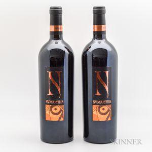 Bodega Numanthia Numanthia 2004, 2 bottles