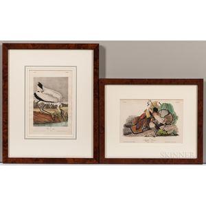 Audubon, John James (1785-1851) Two Octavo Ornithological Chromolithographic Plates.