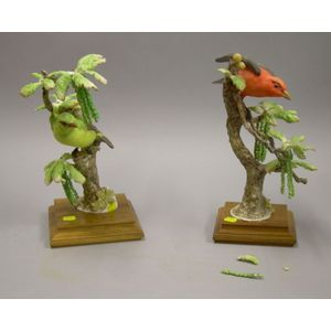 Pair of Royal Worcester Scarlet Tanagers
