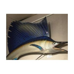 Large Billfish Wall Trophy.
