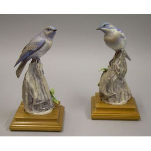 Pair of Royal Worcester Porcelain Mountain Bluebirds