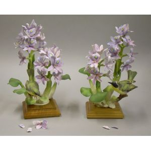 Pair of Royal Worcester Porcelain Yellow Throats