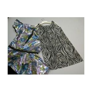 Fiandaca Silver Sequined Party Dress and a 1960s Zebra Stripe Paper Chemise.