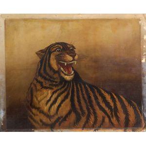American School, 19/20th Century    Portrait of a Growling Tiger.