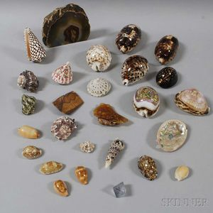 Group of Shells, Mineral Specimens, and Arrowheads.     Estimate $100-200