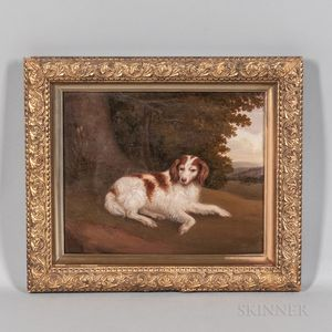 Anglo/American School, 19th Century      Portrait of a Dog