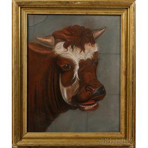 American School, c. 1870    Portrait of a Bull