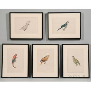 La Roche Laffitte (French, b. 1943)      Five Framed Watercolors of Parrots