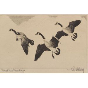 Richard Everett Bishop (American, 1887-1975)    Federal Duck Stamp Design