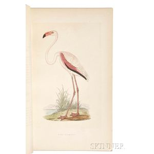 Bree, Charles Robert (1811-1886) A History of the Birds of Europe Not Observed in the British Isles.