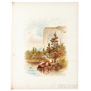 Yosemite Illustrated in Colors.