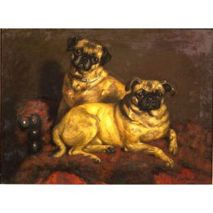 George Paice (British, 1854-1925)    Two Pugs on a Red Divan