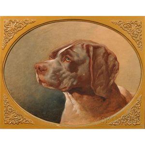 British School, 19th/20th Century      Head of a Hunting Dog