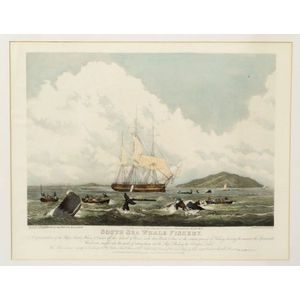 William John Huggins, publisher (British, 1781-1845)    South Sea Whale Fishery.