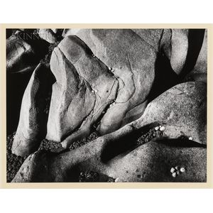 Ansel Adams (American, 1902-1984)      Rocks and Limpets, Point Lobos, California